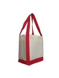 Non-Woven Bags (18)
