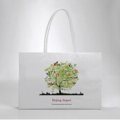 Color Printing Paper Bag
