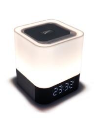 Bluetooth Speaker (76)