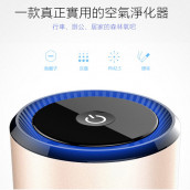 Ionic Air Purifier with Dual USB Ports
